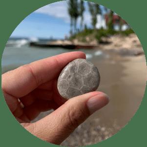 Riverside Petoskey stone